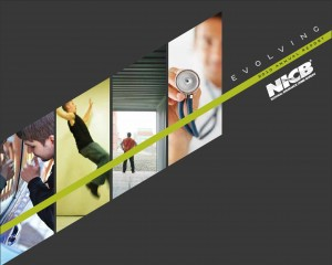 NICB 2010 Annual Report