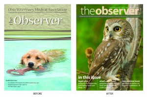 The OVMA Observer - Bi-monthly newsletter
