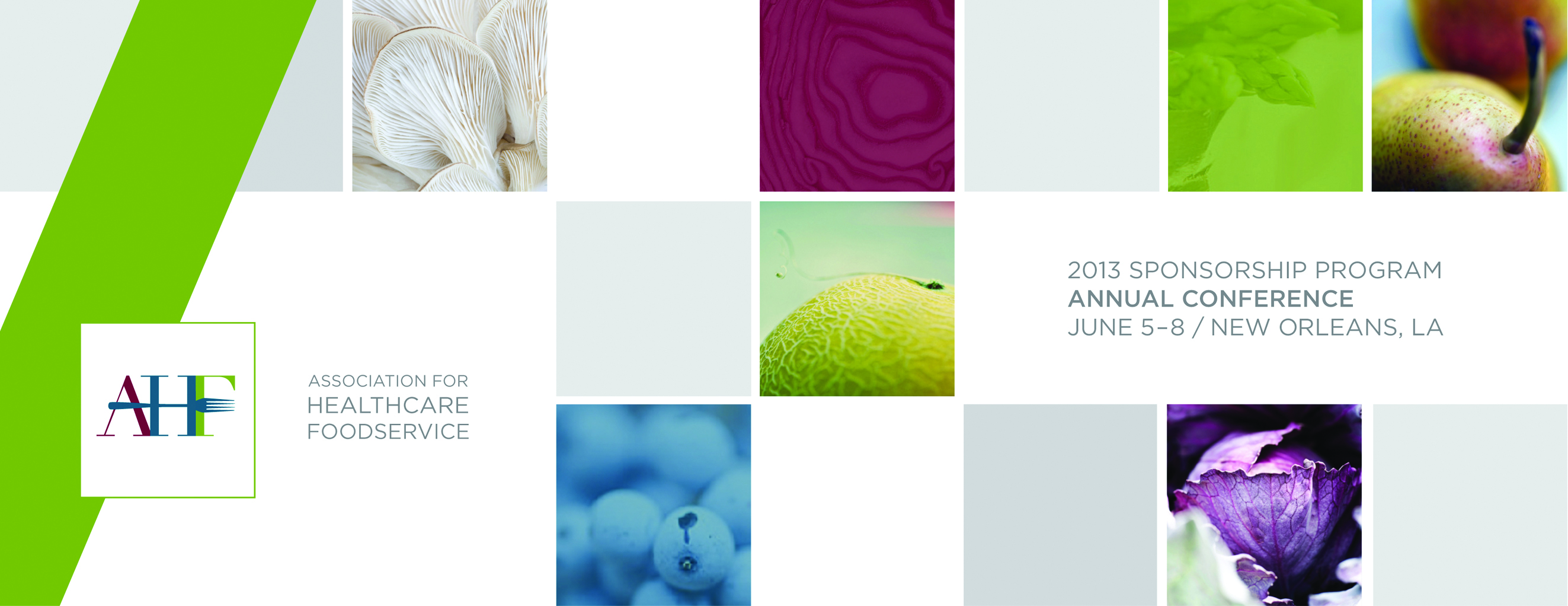 AHF 2013 Sponsorship Program